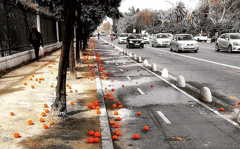 Orange lined Seville roads