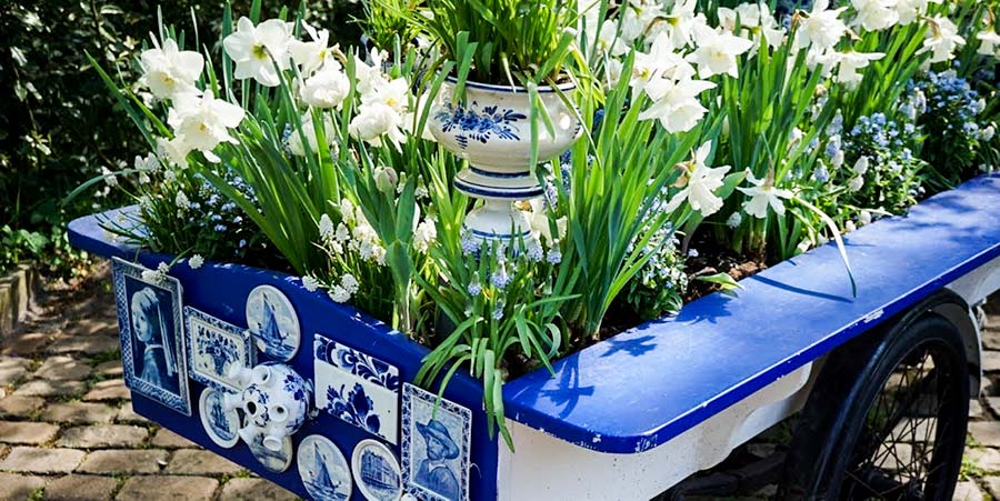 blu and white flower display in a blue cart at Keukenhof holland