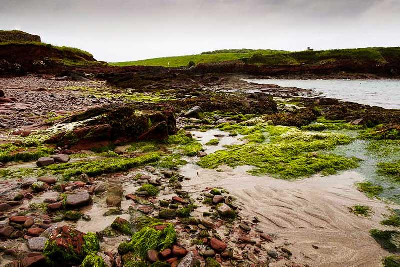 St Brides Bay, Pembrokeshire, Wales