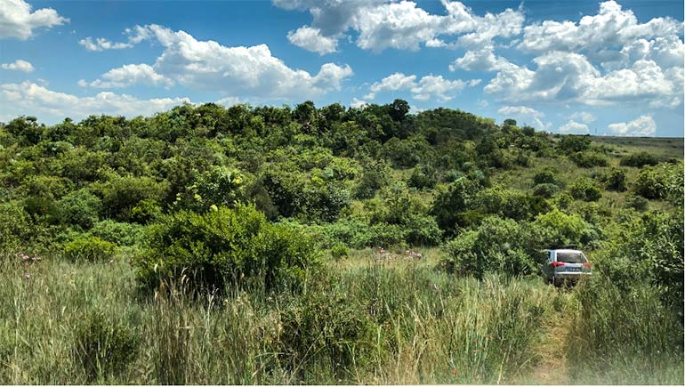 Part of the 4x4 trail we drove on while doing the Protea 4x4 training in preparation for driving in South Africa