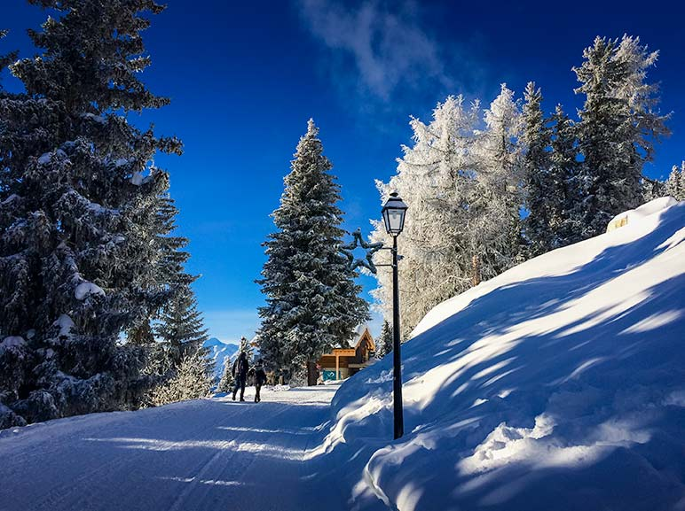 Bettmeralp skiing scenery