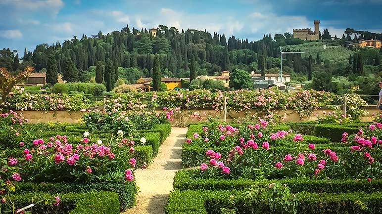 Boboli Gardens, Florence - rose garden