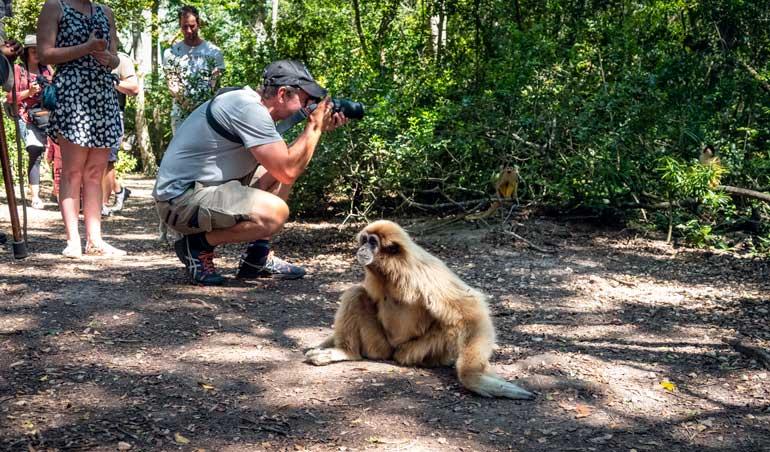 Guided safari at Monkeyland Plettenberg Bay