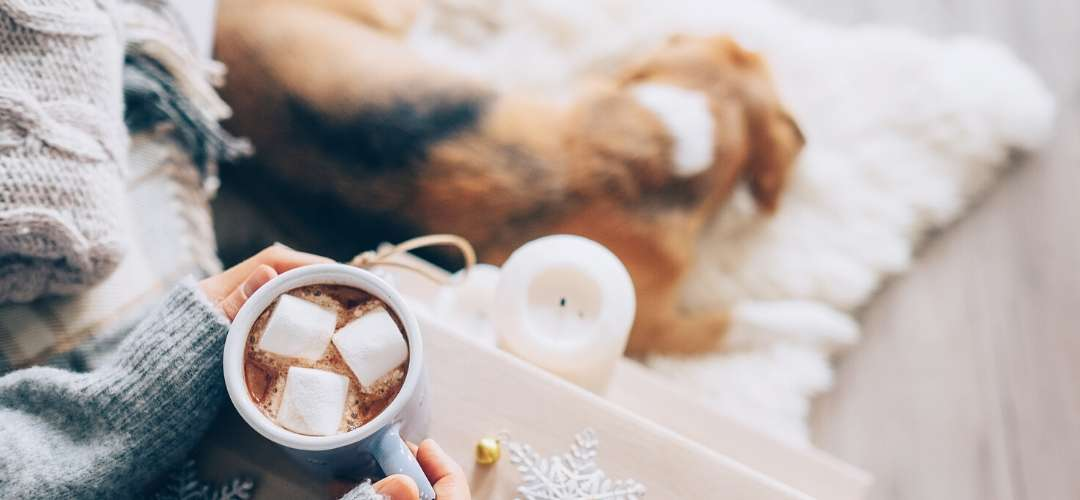 Christmas in July Hot chocolate by dog sleeping
