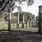 Olympia columns at the ancient archaeological site