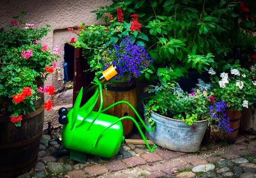 Eguisheim Flower display