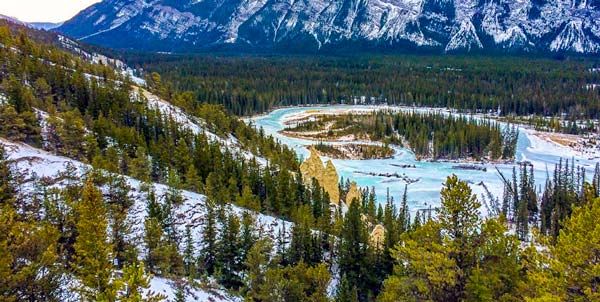 Banff-Hoodoos-in-Banff-National-Park limestone pillars in amongst trees and a lake in the background