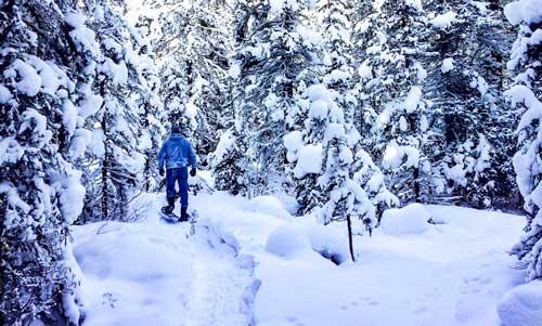 Snowshoeing-in-Banff