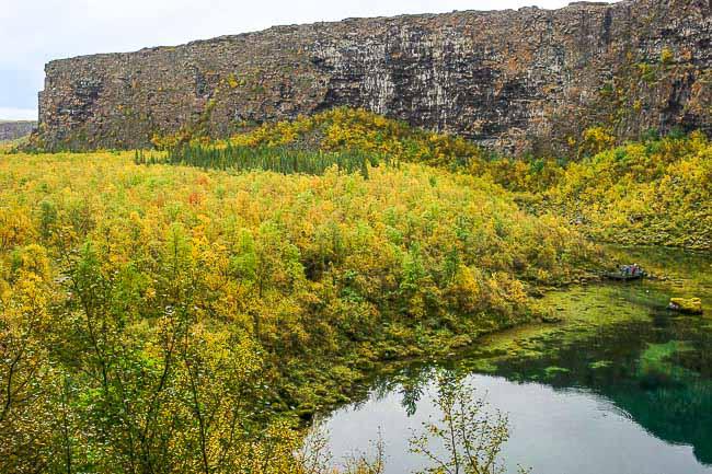 autumn colours of Asbbyrgi canyon, Iceland