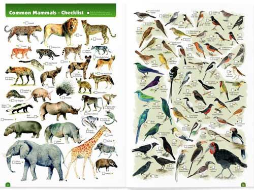 Kruger animal checklist